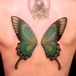蝶 butterfly  (刺青 タトゥー tattoo 画像 デザイン)