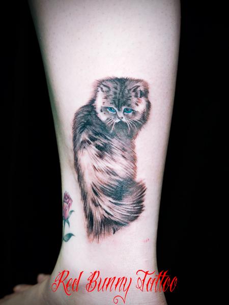 タトゥーデザイン 猫 動物 ペット 女性 cat tattoo